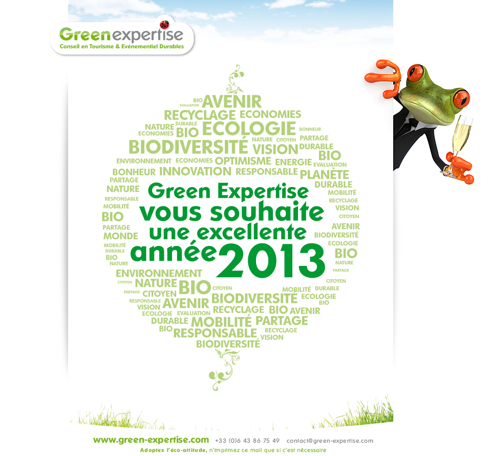 voeux_green_expertise_2013