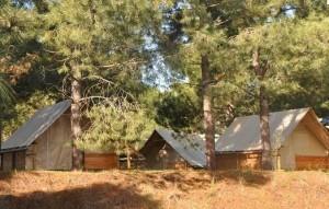 camping_olva_lodges